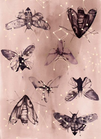 Rebecca_pp_moth-pinkmoyo