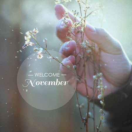 welcomenovember